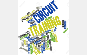 CIRCUITS TRAINING
